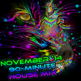 TYRiddler - November 2014 House DJ Set