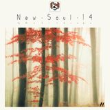 New Soul 14 : Forest Shades (CD 1)