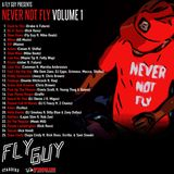 A Fly Guy Presents: Never Not Fly Volume 1