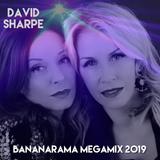 Bananarama Megamix 2019
