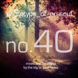 Prototype of Nu-Soul 40