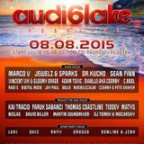 Dj Quiz @ Audiolake Festival / Afterparty 2015