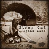 Stray Cat 20150114 At Mixlr