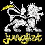 """""""It's a Junglist Ting"""" Ragga Jungle & Junglist Mix (Oct.2013)"""
