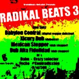 Dj Contradiction at Radikal Beats 3