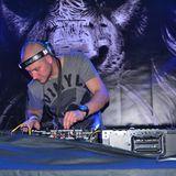 Dj Chicken - Live @ Beats 4 Love 2014 (VIP Playa Lion Stage)