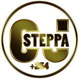 STEPPA HIPHOP MIXX.