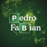Pedro Fabian - Noviembre 2013