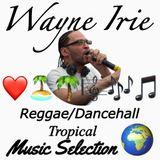 Wayne Irie Live Show Featuring Reggae Dancehall Tropical Music Selection