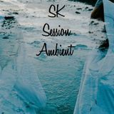 Session Ambient SK Vol 41