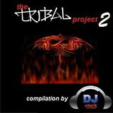 The Tribal Project 2 by eNeX