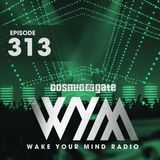 Cosmic Gate - WAKE YOUR MIND Radio Episode 313