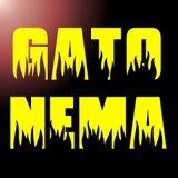 GatoNema-TimeAndRelativeDimension(s)InSpace