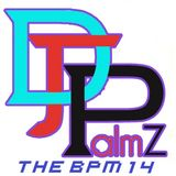 DJ Palmz - The BPM 14
