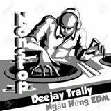 Nonstop (EDM2017) - Khơi Nguồn Cảm Hứng EDM - Deejay Trally In The Mix.mp3