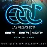 Tiesto - Live @ Electric Daisy Carnival Las Vegas - 21.06.2014