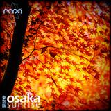 Osaka Sunrise 53