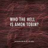 Who the Hell is Amon Tobin? (Perfect Amon Tobin) (Exclusive for AmonTobin.com)