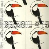 Brasil # 14: Transamazonica