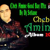 Cheb Amine Good Bay Mix By Dj Sofiane