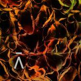 Anomalous Mix 003 // CYCLIC