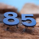 Soft Oblongs #85