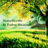 Teaboo Muzaard - HouseHexMix