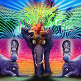 Caroline Banx recorded live @ Elephant Art Cafe/Anjuna/Goa