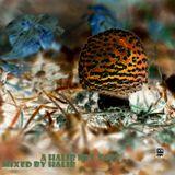 A Halib Mixtape. Side B