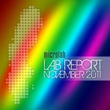 Lab Report November 2011