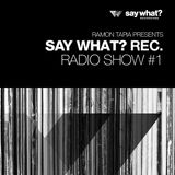 Say What? Podcast 001 with Ramon Tapia