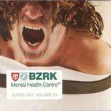 Buzz Fuzz  – BZRK Mental Health Centre™ Audiology Volume 01