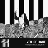 Veil Of Light - Secret Thirteen Mix 161