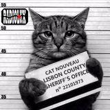 Cat Nouveau - episode #87 (05-09-2016)