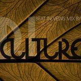 DJ Culture, Beat in veins mix 28-03-2013