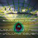 Witness To The Nagual - Eclipse Over The Liquid Dub Trees