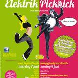 Elektrik Picknick 2014