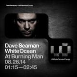 Dave Seaman - Live at White Ocean, Burning Man Festival, USA August 26th 2014