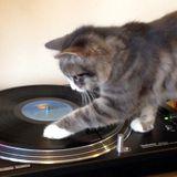 DJ Shadow Radio #1: Hi Kitten
