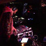 Armies of Turtle - Chillits 2013 (DJ set)