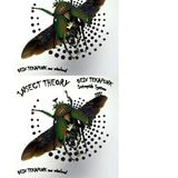 electronik insect theory