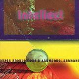 JJ Jellybean and MC Blackeye @ Intellect, CHICAGO (1995)