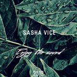 SashaViceMusic_-_Gentle_Promo