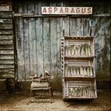 Sara Alexander - Smoking beats