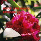 Mook Life Radio Episode 33 [Live D&B Mix]