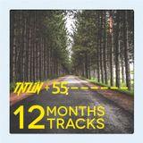 Tatlin and 55 - 12 months, 12 tracks (dj mix)