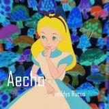 Teddys Rucus - Aecho