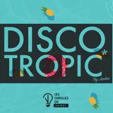 Discotropic mix by Jankev (Jan. 18 - mix #17)