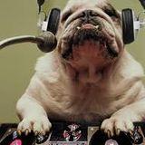 February Drum & Bass mix 174BPM JUNGLE