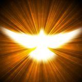 11. Dios en Emanacion